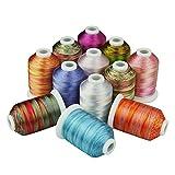 Simthreads 12 Multi Farben Polyester Stickgarn - 1,000 Meters, für Brother/Babylock/Janome/Kenmore/Singer Stickmaschine (12 Faben - MU)